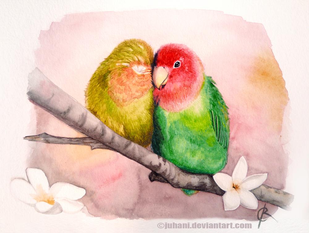 Snuggle birds