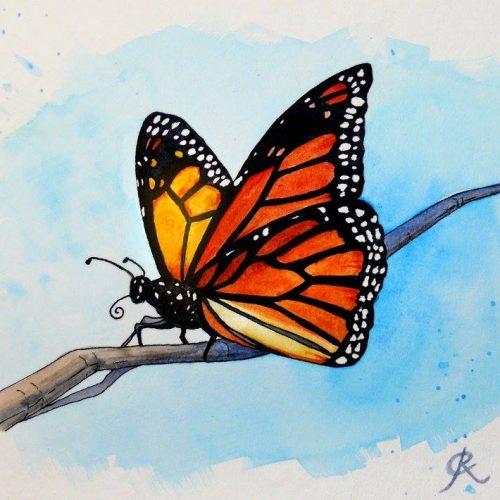 ButterflyWatercolour